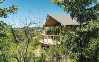 Mdluli-Safari-Lodge-WR-tent-exterior-side