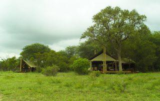 Plains-Camp-Rhino-Walking-Safaris-Tents-scaled.j