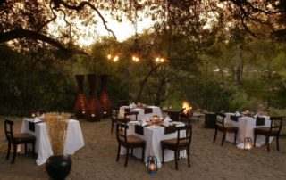 Sabi-Sabi-Little-Bush-Camp-Dining