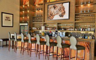 Safari-Plains-Bar