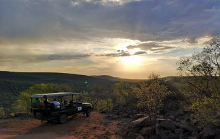 Nungubane-Game-drive-Safari