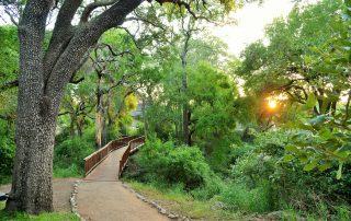 Imbali-Safari-Lodge-Walkway