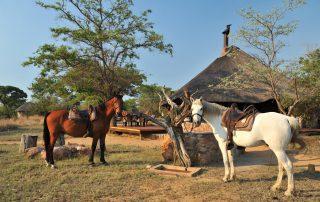 Kwafubesi-Tented-Safari-Camp-Horseback-Safar