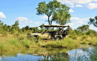 Imbali-Safari-Lodge-Game-drive-safari