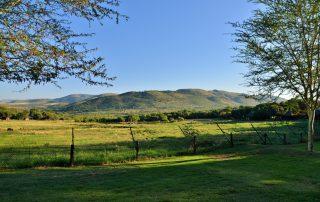 Bakubung-Bush-Lodge_Exterior_View-of-Valley