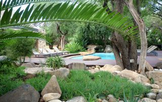 Amakhosi-Safari-pool