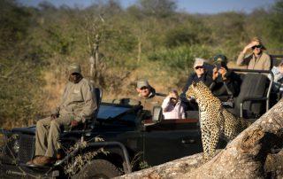 RockFig-Safari-Lodge_Activities