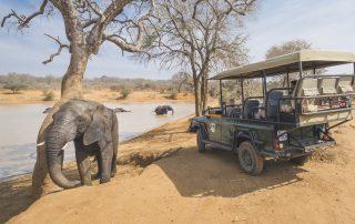 Jabulani-Wildlife-Safari