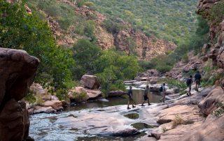 Marataba-South-Africa_Safari_4_Bush-Walk