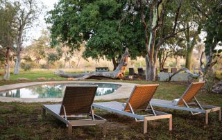 Camp-George-Simbavati-Pool