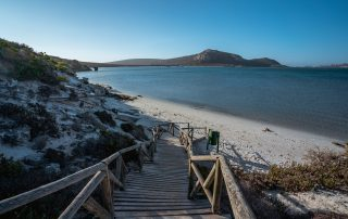 Shark-Bay-Hotel-Beach-path