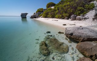Shark-Bay-beach