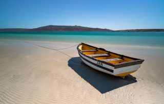 Shark-Bay-Jans-boat