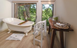 Karongwe River-views-and-bath-in-the-luxury-rooms-at-River-Lodge