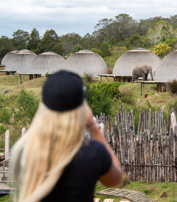 Gondwana-Kwena-Lodge-Elephant-sighting