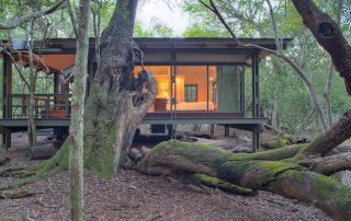 Exterior-of-guest-suite-at-andBeyond-Phinda-Forest-Lodge