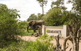Simbavati-river-lodge-Entrance