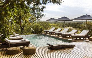 Simbavati-hilltop-lodge-Pool