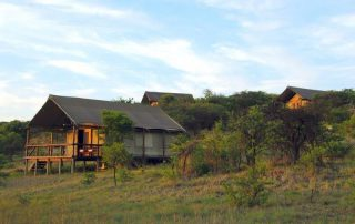 Springbok-Lodge-Standard-Tents