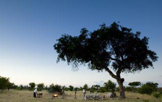 Guest-delight-suprise-at-andBeyond-Ngala-Safari-Lodge
