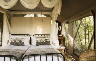 Simbavati-trails-camp-Tent