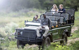 Simbavati-Trails-Camp-Game-Drive-Safari.