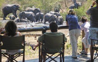 Tuningi-Safari-Lodge-Xscape4u-Game-viewing-from-the-deck-Madikwe-Game-Reserve