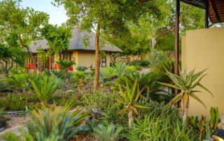 Jacis-Sabi-House-Xscape4u-Gardens-Sabi-Sand-Game-Reserve-Dan-Avila-Photograph