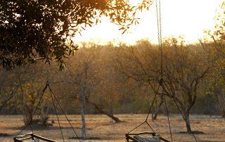 Jacis-sabi-house-Xscape4u-Swings-Sabi-Sand-Game-reserve