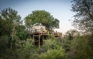 Garaonga-Safari-Xscape4u-Sleep-out-Makalali-Game-Reserve