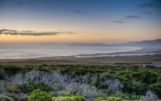 Grootbos-Xscape4u-forest-lodge-exterior