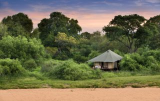 Guest-tent-at-andBeyond-Ngala-Tented-Camp-Xscape4u