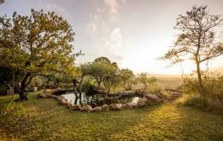 Leopard-Mountain-Xscape4u-Waterhole-Manyoni