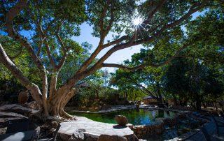 Mabula-Game-Lodge-Xscape4u-Terrace-Water-Feature