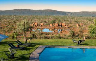 Madikwe-Safari_Lelapa-Xscape4u-Pool
