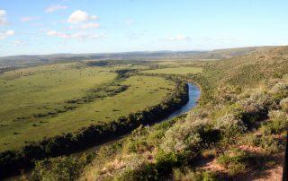Hlosi-Game-lodge-Xscape4u-Amakhala-Game-Reserve