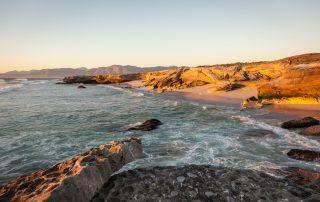 Grootbos-Xscape4u-experience-coastal-safari-beac