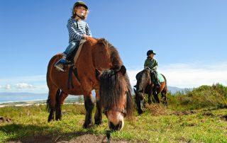 Grootbos-Xscape4u-family-pony.
