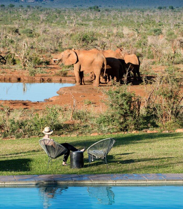 Madikwe-Safari-_Lelapa-Xscape4u-Guest-Pool