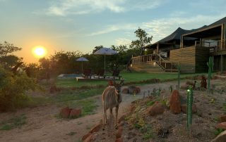 Ndhula-Luxury-Tented-Xscapee4u-Lodge-Likweti-Wildlife
