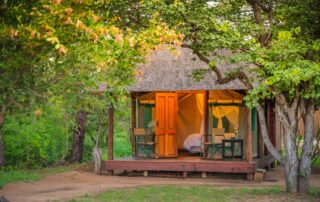 Shindzela-tented-Camp-Xscape4u-Timbavati-Game-Reserve