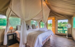 Shindzela-Tented-Camp-Xscape4u-double-tent-Timbavati-Game-Reserve