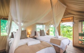 Shindzela-Tented-Camp-Xscape4u-Twin-tent-Timbavati-Game-Reserve