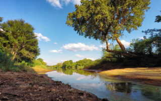 Abelana-Safari-camp-Xscape4u-River