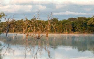 Abelana River Lodge - Xscape4u - River