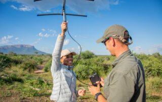 Marataba-Experiences-Telemetry-Xscape4u-Marakele-National-Park-Waterberg