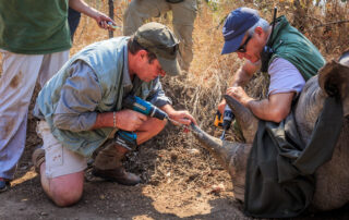 Marataba-Experiences-Conservation-Xscape4u-Marakele-National-Park-Waterberg