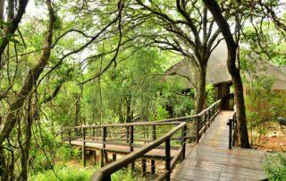 Nibela-Lodge-Walkways-Isimangaliso-Xscape4u