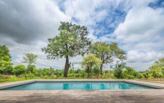 Kambuka-Pool-Elephant-Point-Greater-Kruger-Xscape4u