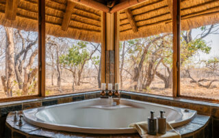 Jackalberry-Lodge-Xscape4u-Bathroom-Thornybush-Game-Reserve